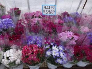 DSC00045_R